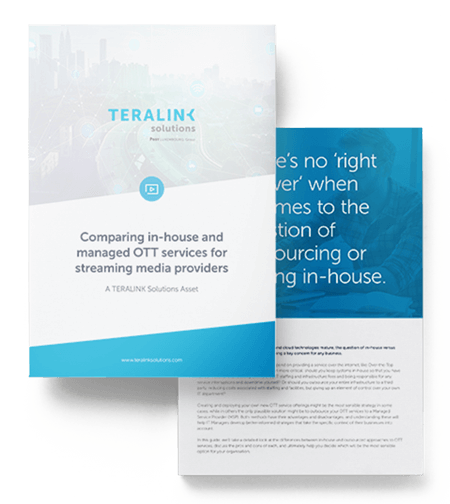 Teralink-Asset-Inhouse-vs-Outsourced-Mockup-2-pages