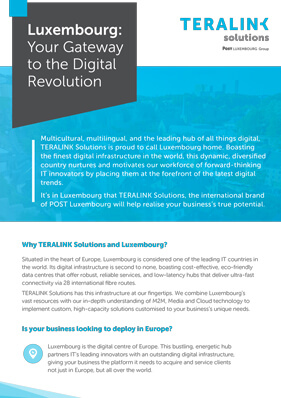 Find out why Luxembourg's unrivalled digital infrastructure is the key to realising your business's true potential